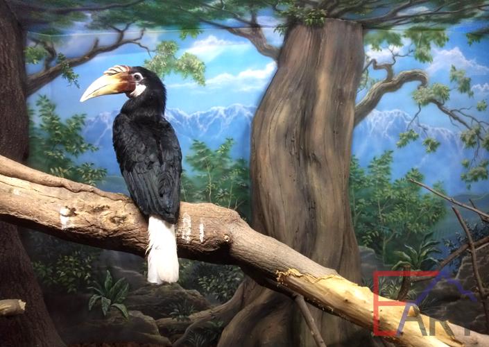 Роспись на стене в вольере зоопарка в Москве